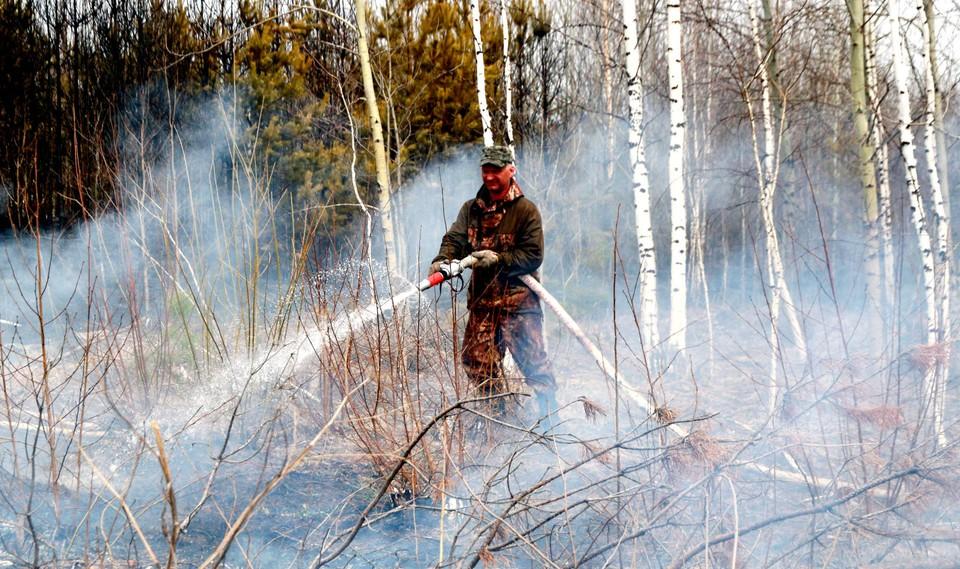 Пожароопасный сезон приближается к своему концу