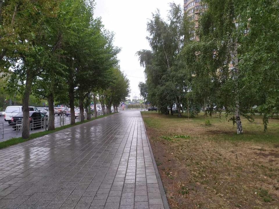 В Тюмени ночной дождь закончится утром.