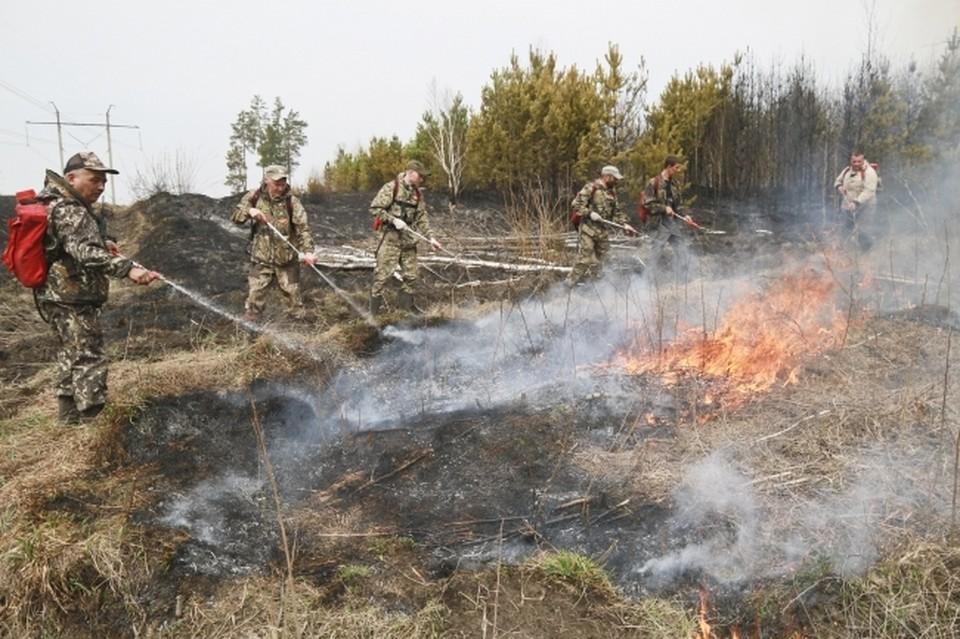 По предварительным прогнозам, пожарные планируют локализовать пожар вечером 15 июля.