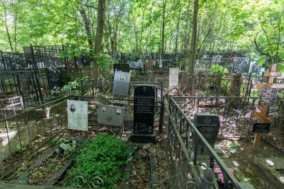 Разграбить успели шесть могил