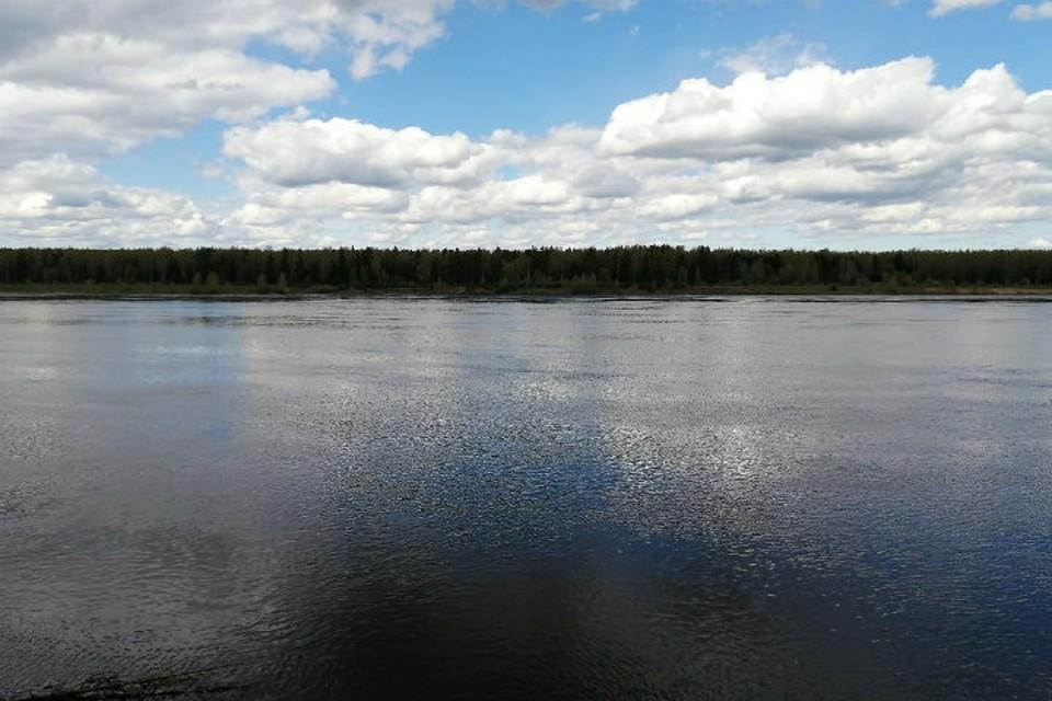 Специалисты не рекомендуют купаться в ярославских водоемах