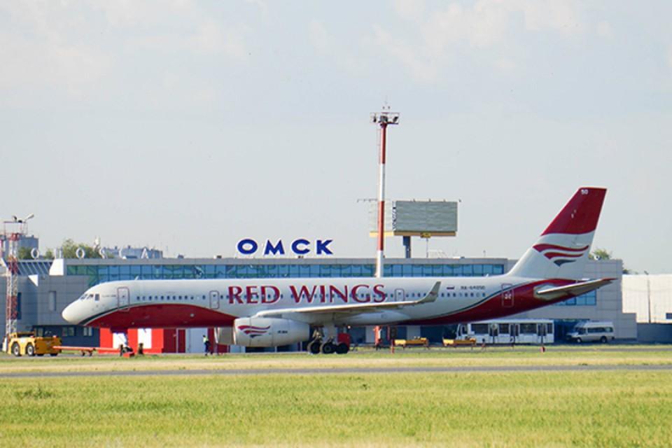 В омском аэропорту составили топ-3 птиц, которые попадают в турбины самолетов.