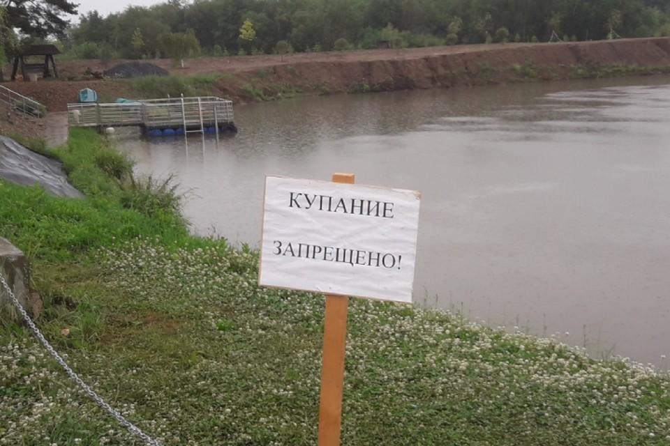 Такие таблички появились на запрещенных для отдыха водоемах города. Фото: admkirov.ru