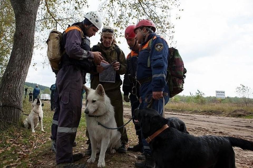 Поиски пенсионеров велись шесть часов. Фото: ГУ МЧС по Новосибирской области
