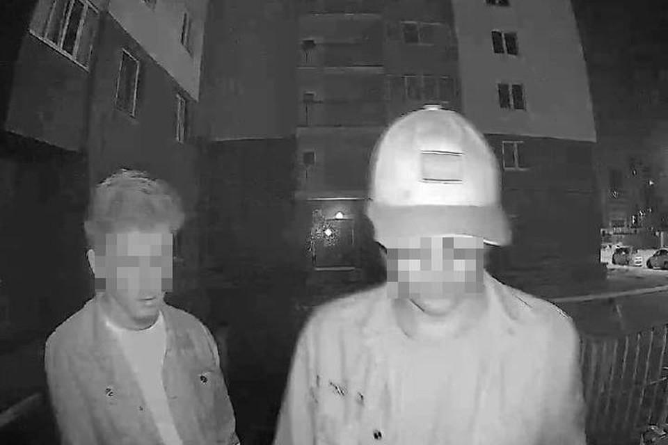 Ребят засняла камера видеонаблюдения на подъездной двери. Фото: соцсети