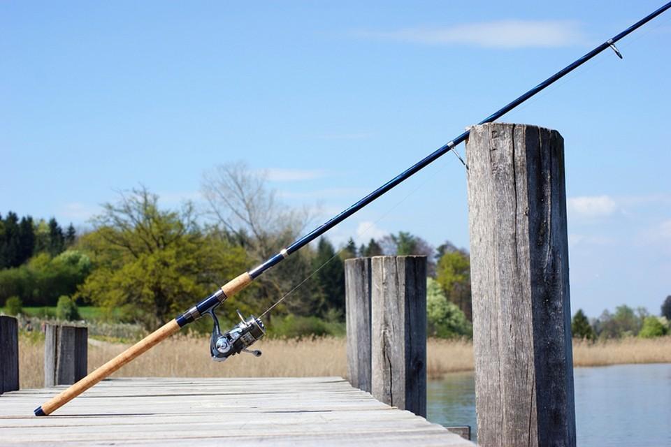 Правила любительского рыболовства и ведения рыболовного хозяйства утверждены в Беларуси. Фото: pixabay