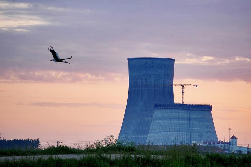 К 2030 году в Беларуси понадобится специальное хранилище для радиоактивных отходов.