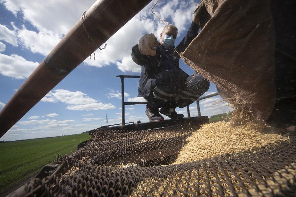В Республике прорабатывают новые условия поддержки сельхозпроизводителей