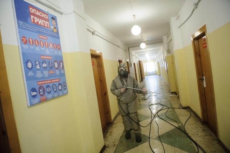 За все время пандемии в Коми выявлен ПЦР-тестированием 63 601 случай заболевания COVID-19