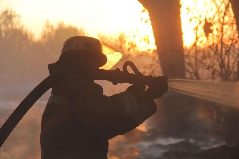 Чрезвычайная степень пожарной опасности сохраняется на большей части территории ЛНР. Фото: МЧС ДНР
