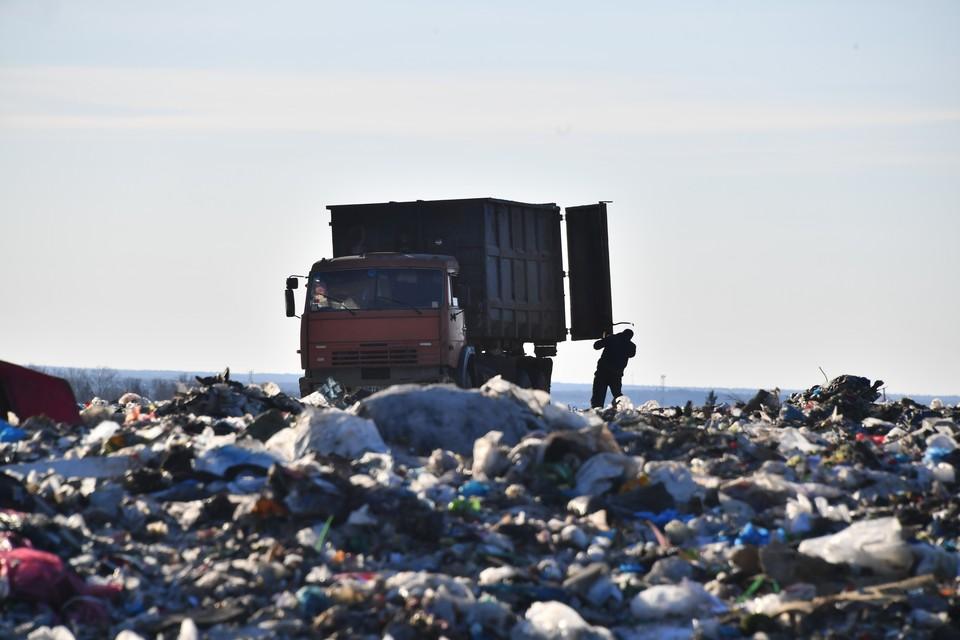 Нарушителям предстоит компенсировать сумму экологического ущерба