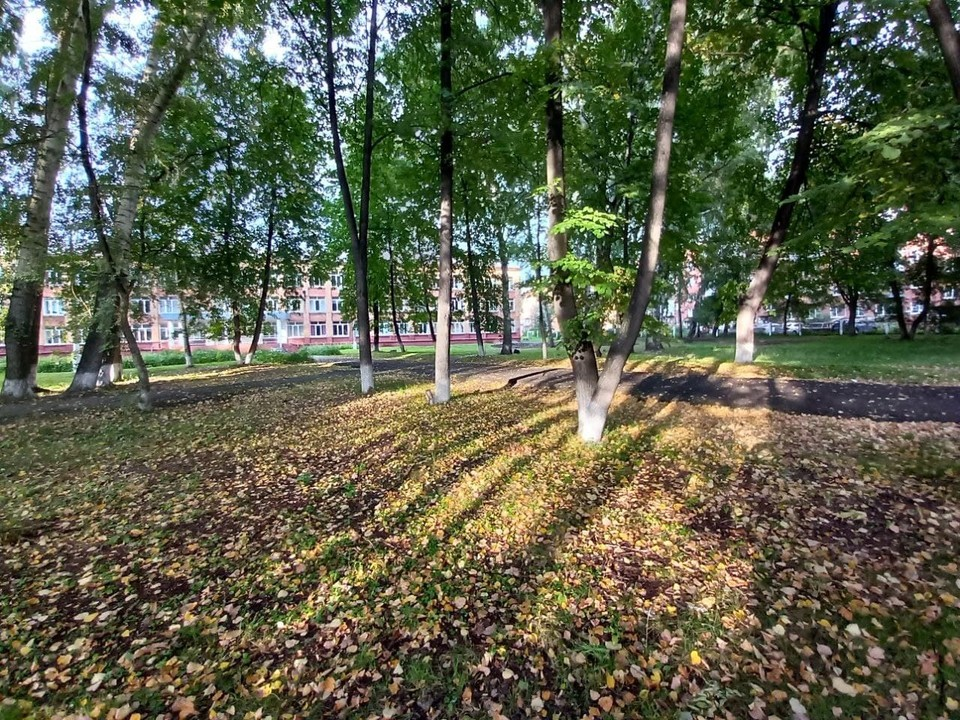 По прогнозу синоптиков, средняя температура первого осеннего месяца в Кузбассе будет выше нормы на один градус.