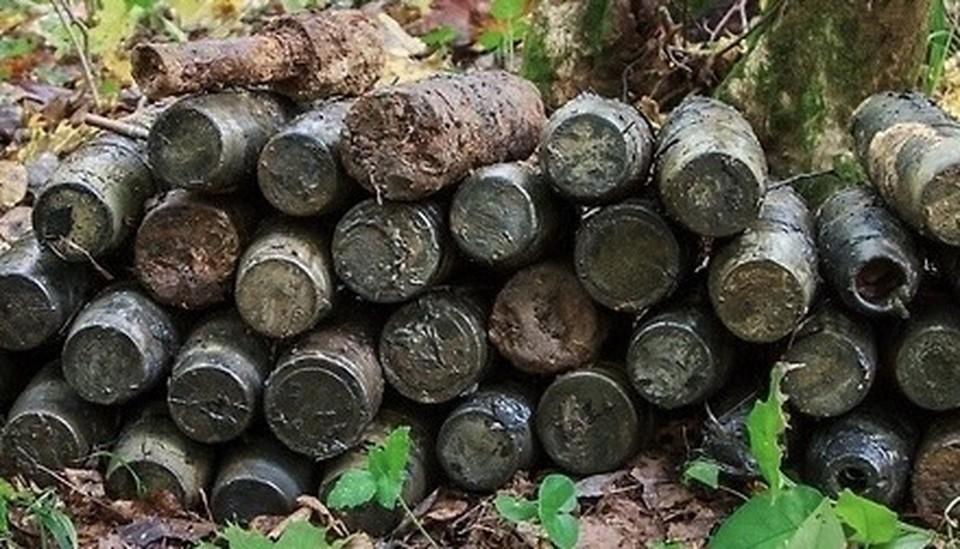 Авиабомбу и 36 артиллерийских снарядов нашли под Смоленском. Фото: пресс-служба ГУ МЧС по Смоленской области.