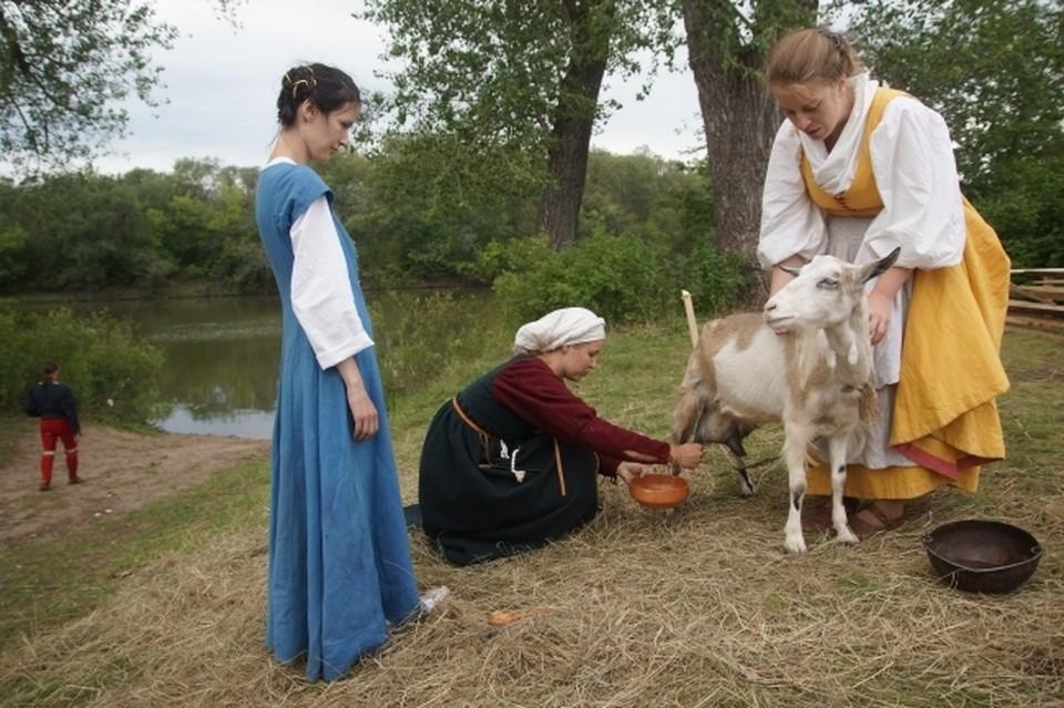 В Ростовской области на поддержку молочной фермы потратят 9,2 миллиона рублей