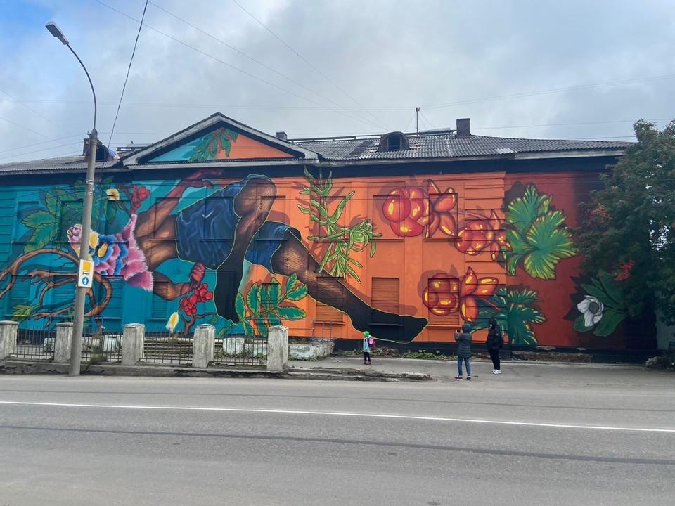 В завершении фестиваля художники подарили городу 14 арт-объектов монументальной живописи – муралов. Фото: правительство Мурманской области