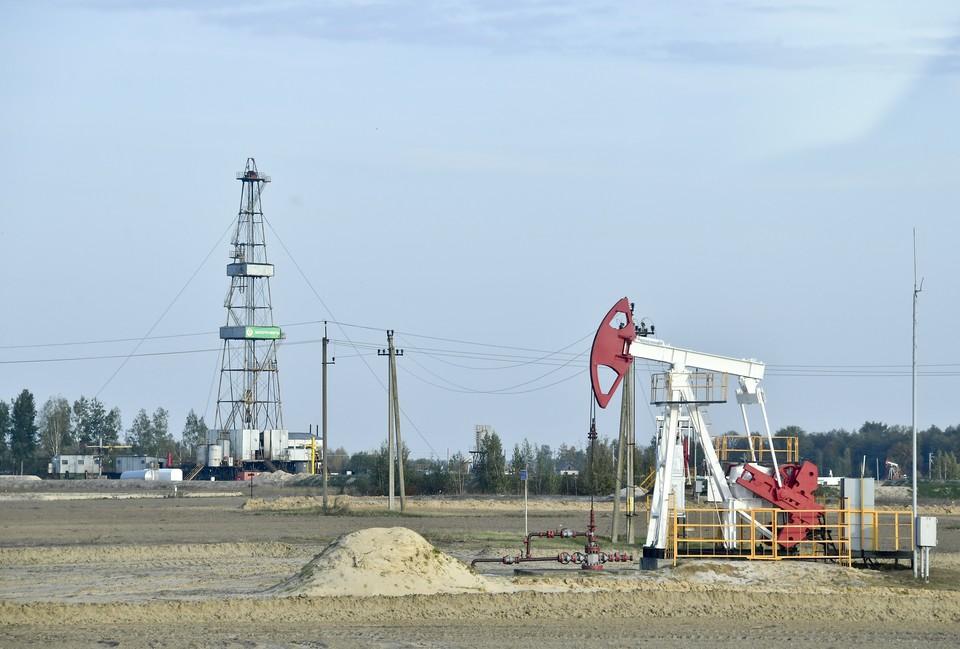 На Среднем Урале обнаружили запасы 10 тысяч тонн нефти.