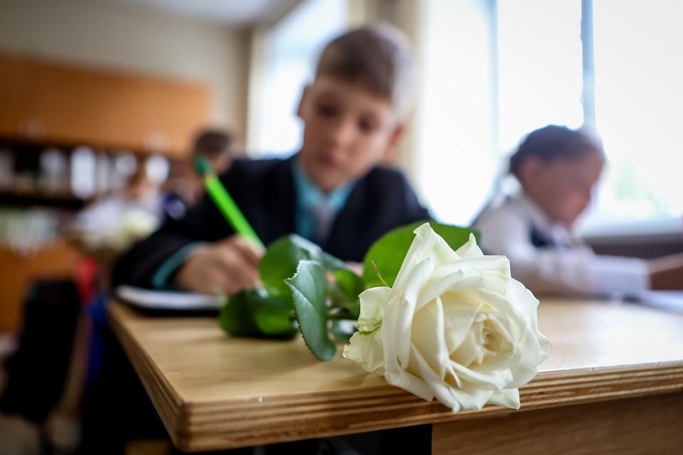 1 сентября этого года в первый класс в уфимские школы пошло 16 221 детей
