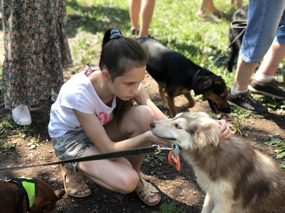 На акции казанцы смогут пообщаться с животными и взять себе домой нового друга.