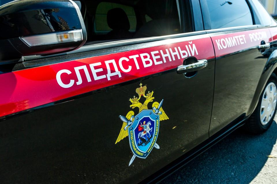 Жителя Петербурга задержали за распространение детской порнографии