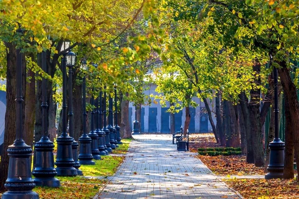 Ростовчанка считает, что в Краснодаре чище и больше парков.