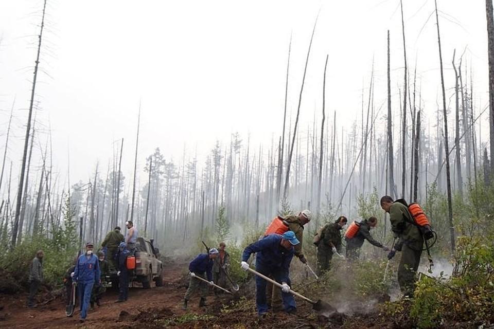 В Иркутской области нет ни одного лесного пожара