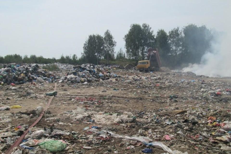 Летом свалка под Тумой неоднократно загоралась, накрывая дымом ближайшие населенные пункты. Фото: ОНФ