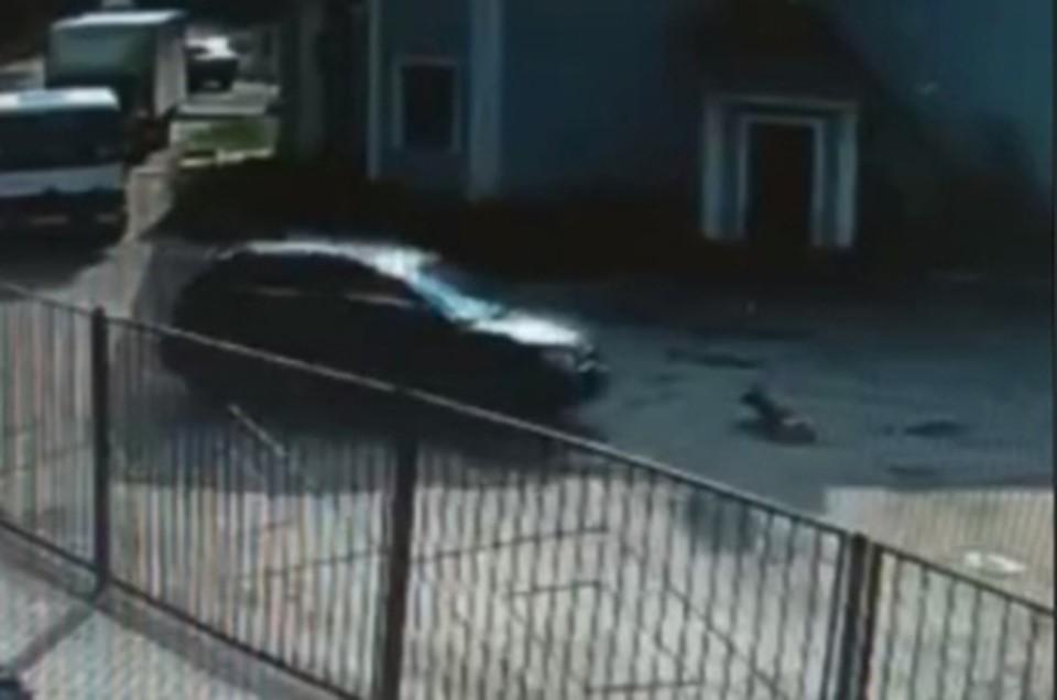 Водитель специально наехал на собаку на АЗС Фото: vk.com/podslyshano_y_voditelei69/Валерия Тихонова (скрин видео)