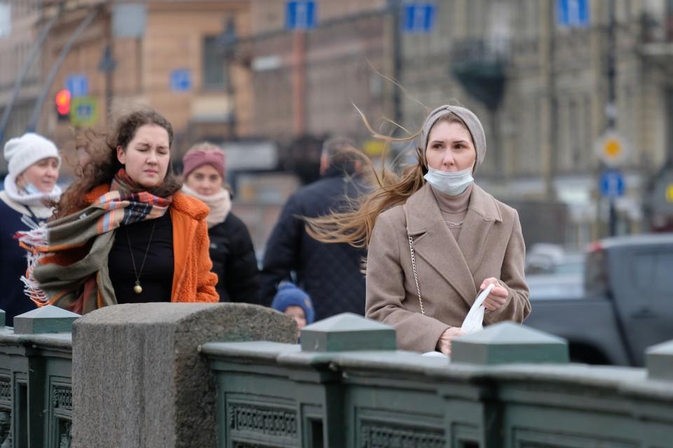 МЧС предупредило о сильном ветре в Петербурге 14 сентября