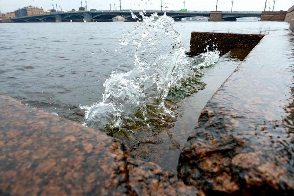 Уровень воды в Неве за час поднялся на 10 см