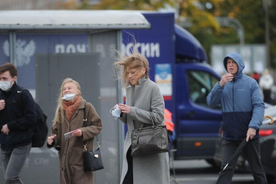 Мощный ветер в Петербурге продержится до второй половины недели