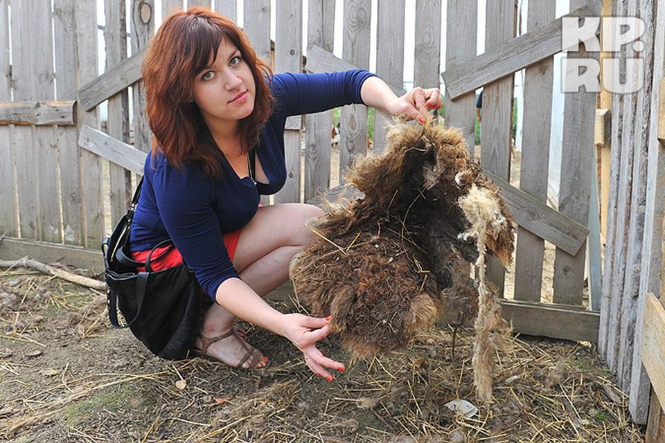 Елизавета Пчелкина и то, что осталось от овцы