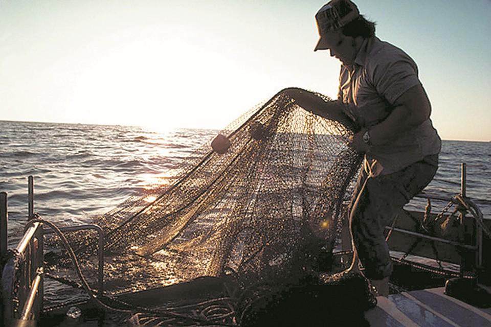 главная рыбалка интернет магазин