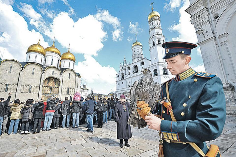 На Соборной площади Московского Кремля туристы могут встретить сотрудников ФСО с ястребами. Эти птицы защищают тут золотые купола соборов от ворон.