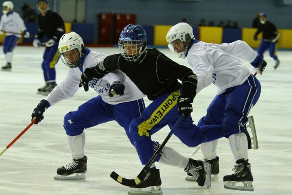 Фото: Министерство физической культуры и спорта Ульяновской области