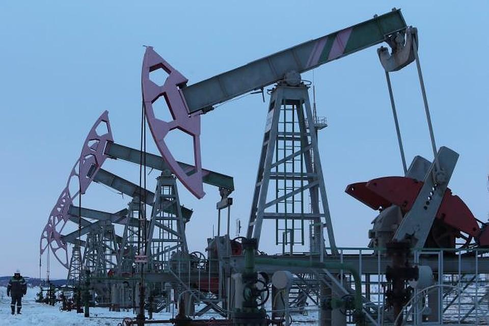 Зайчик, новый год картинки нефть