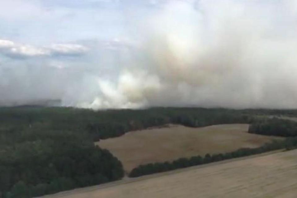 МЧС: «В Хойникском районе горит обычный лес, а не радиоактивный». Фото: МЧС.
