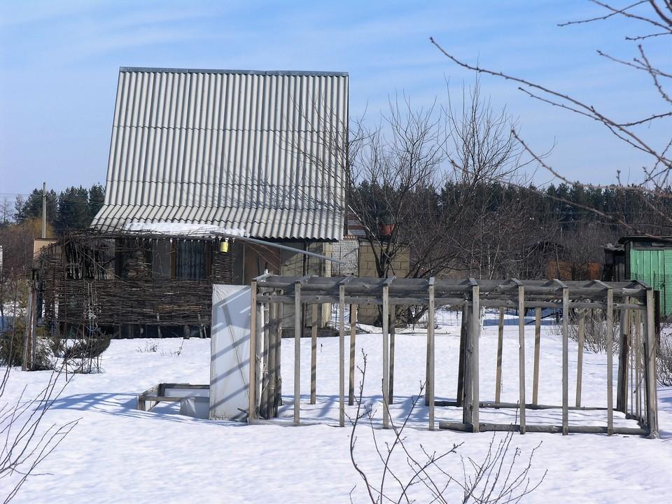 На дачах еще лежит снег, но деревья уже начинают оживать.