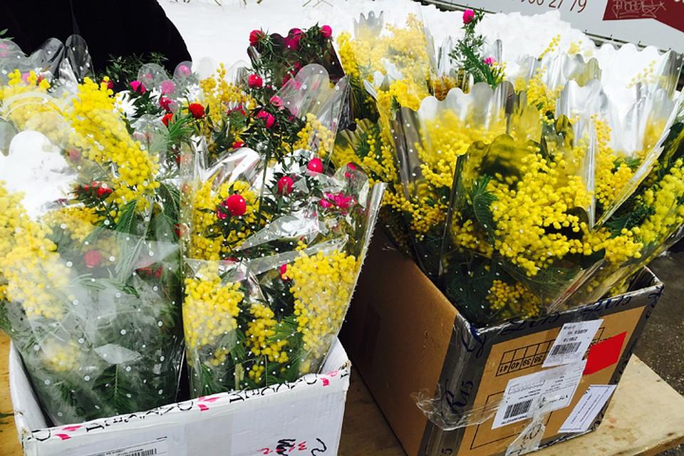 Какие цветы пока не продаются на 8 марта в москве семена чайной розы купить