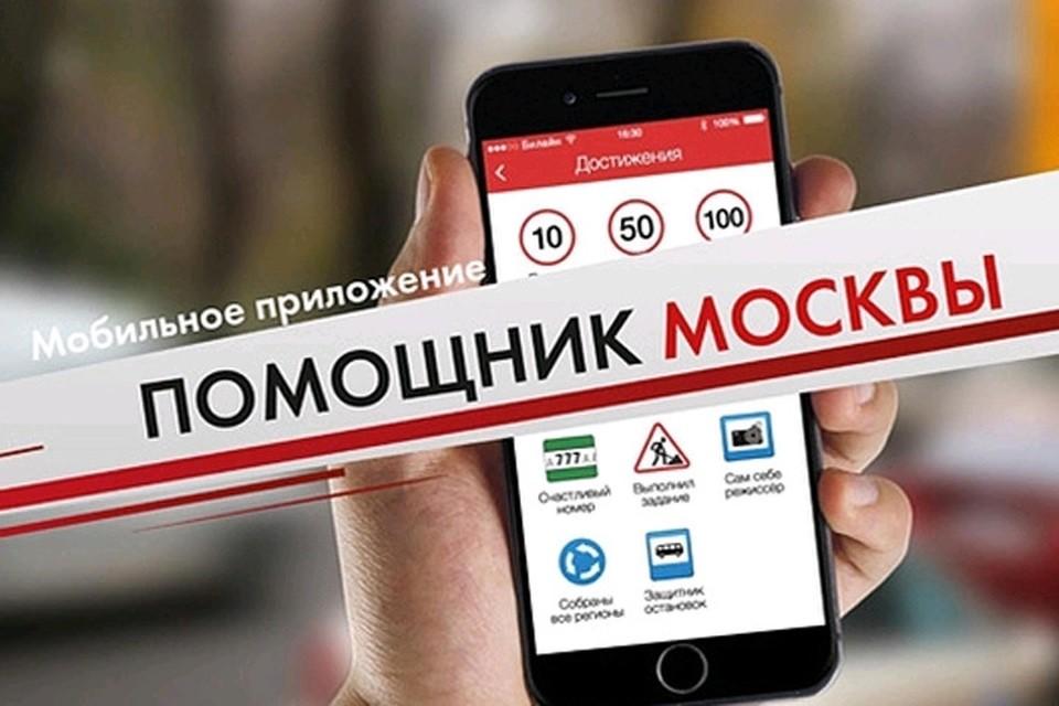 С приложением «Помощник Москвы» теперь можно штрафовать за стоянку под запрещающим знаком