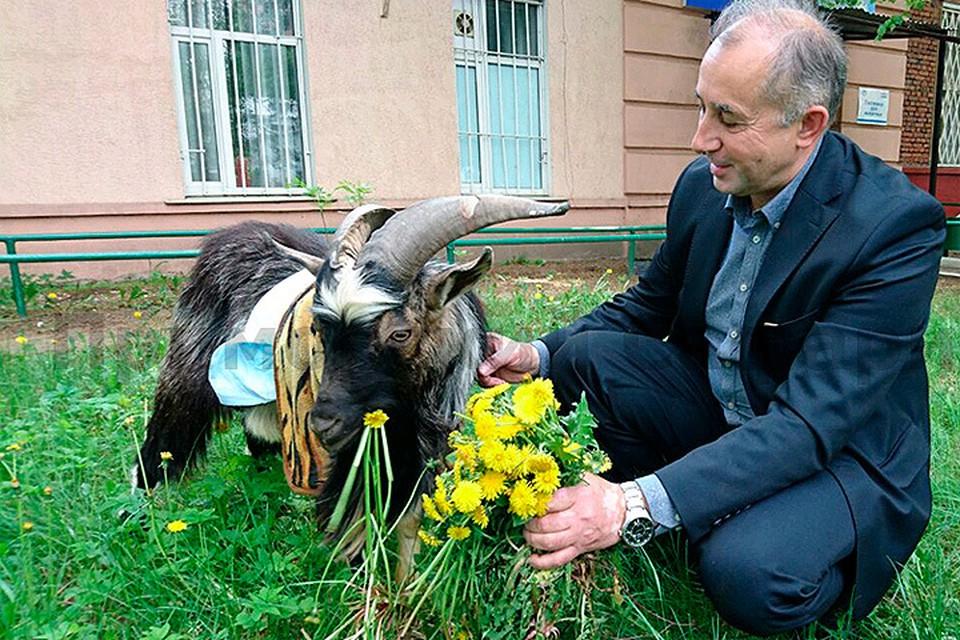 Фото: Дмитрий Мезенцев, Приморский Сафари-парк http://safaripark25.ru