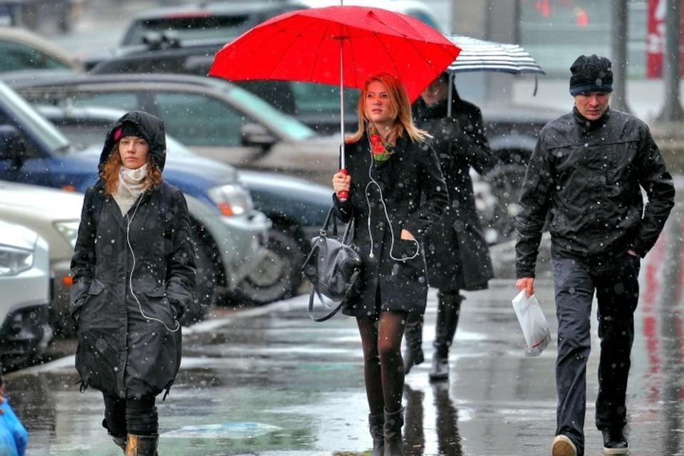 В ближайшие дни синоптики обещают сильные дожди и порывистый ветер. Фото: Иван ВИСЛОВ