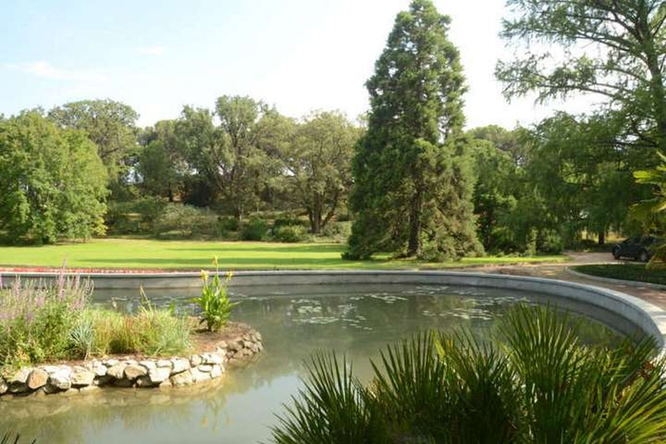 Фото: предоставлено пресс-службой Никитского ботанического сада