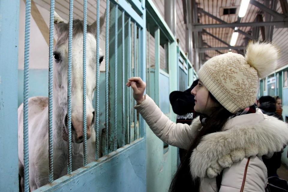 Экскурсию для студентов организовали в рамках общероссийской акции «Студенческий десант».