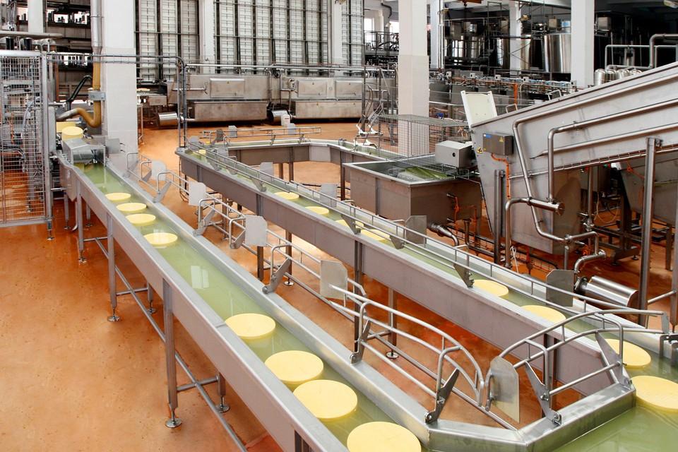 Березовский сыродельный завод - один из лидеров молочной отрасли Беларуси.