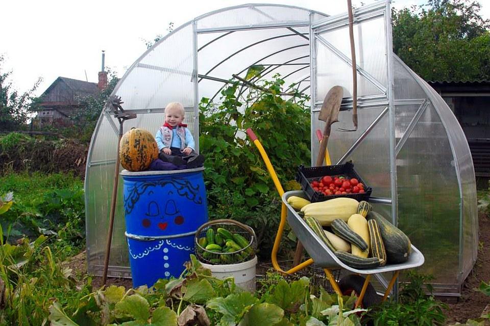 Надежный дом для овощей или зря потраченные деньги?