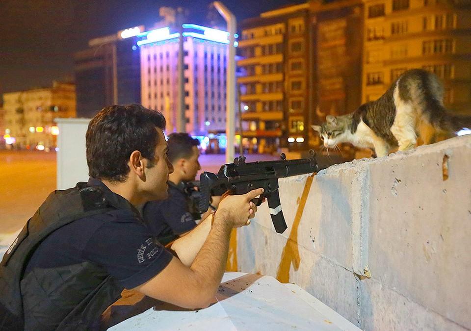Стамбульский кот наблюдает за полицейскими, занявшими оборону в городе.