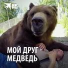 Мой друг - медведь