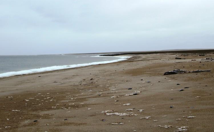 Пляжи Карского моря