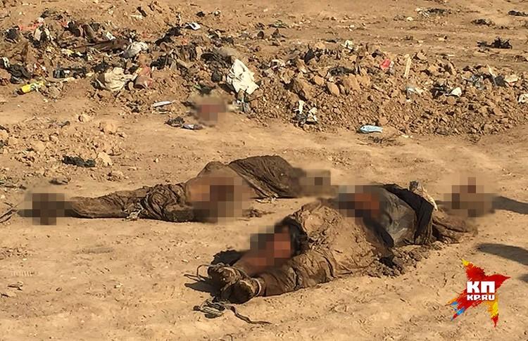 Перед уходом ИГИЛ устроил массовые казни горожан, а потом начались «освободительные» бомбежки