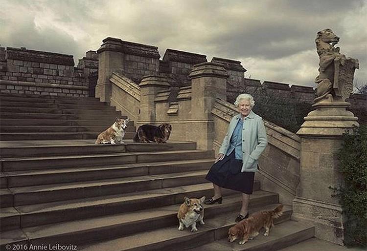 """Елизавета II держит целый """"зоопарк""""."""